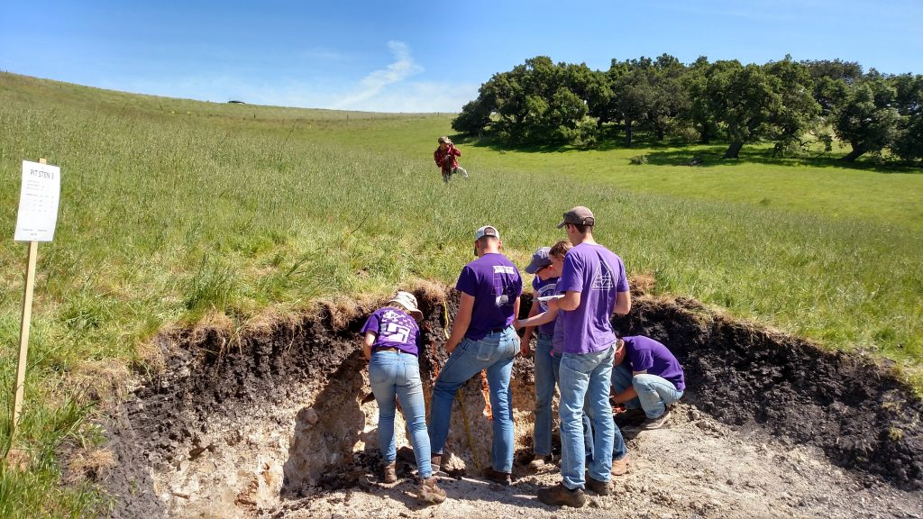 A team of soil judgers evaluates a soil profile on a grassed slope, while one soil judger measures slope in the background.