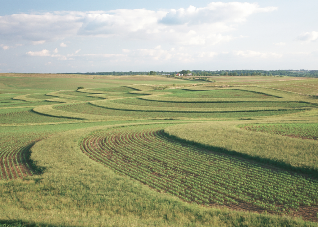 Contour buffer strips alternating between grass and row crops that are planted along the contours of hills.