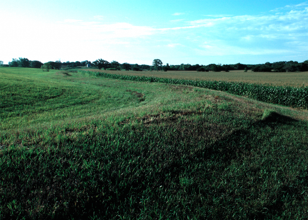 A broad-based terrace for diverting water away from a corn field downslope.