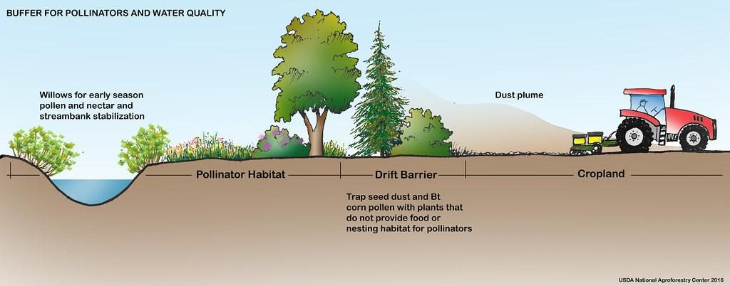A figure showing pollinator habitat next to a stream that is protected from dust from a nearby ag field by a drift barrier of trees.