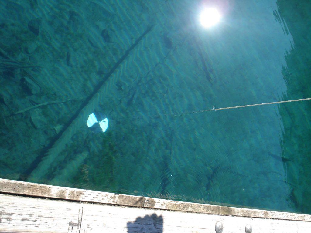A secchi disk in water