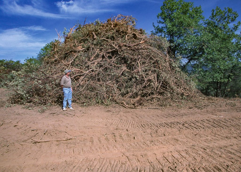A man standing next to a pile twice his height of woody debris from a fire break and fuel reduction project