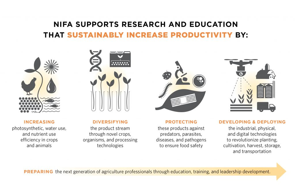 An infographic showing how USDA NIFA supports research and education in agriculture