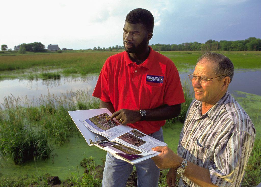 Two men observe a restored wetland