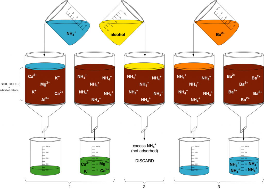 Series of chemical extractions to determine CEC